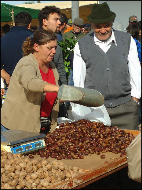 Cold chestnuts for sale in Estoi