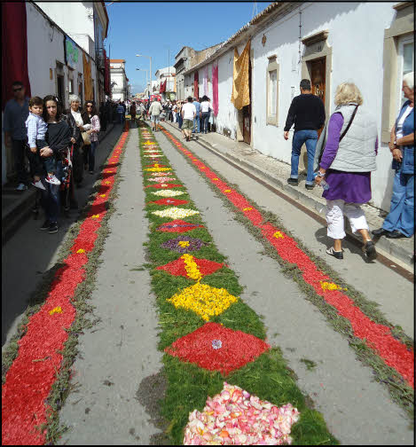 photo 2 of flowers in sao bras